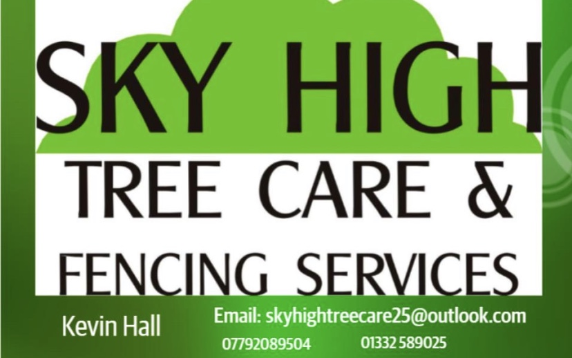 Tree Surgery in Derby
